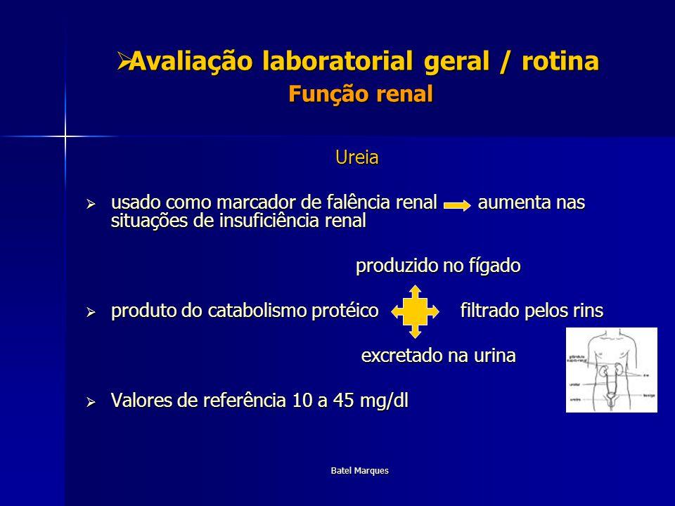 Batel Marques Avaliação laboratorial geral / rotina Função renal Avaliação laboratorial geral / rotina Função renal Ureia usado como marcador de falên