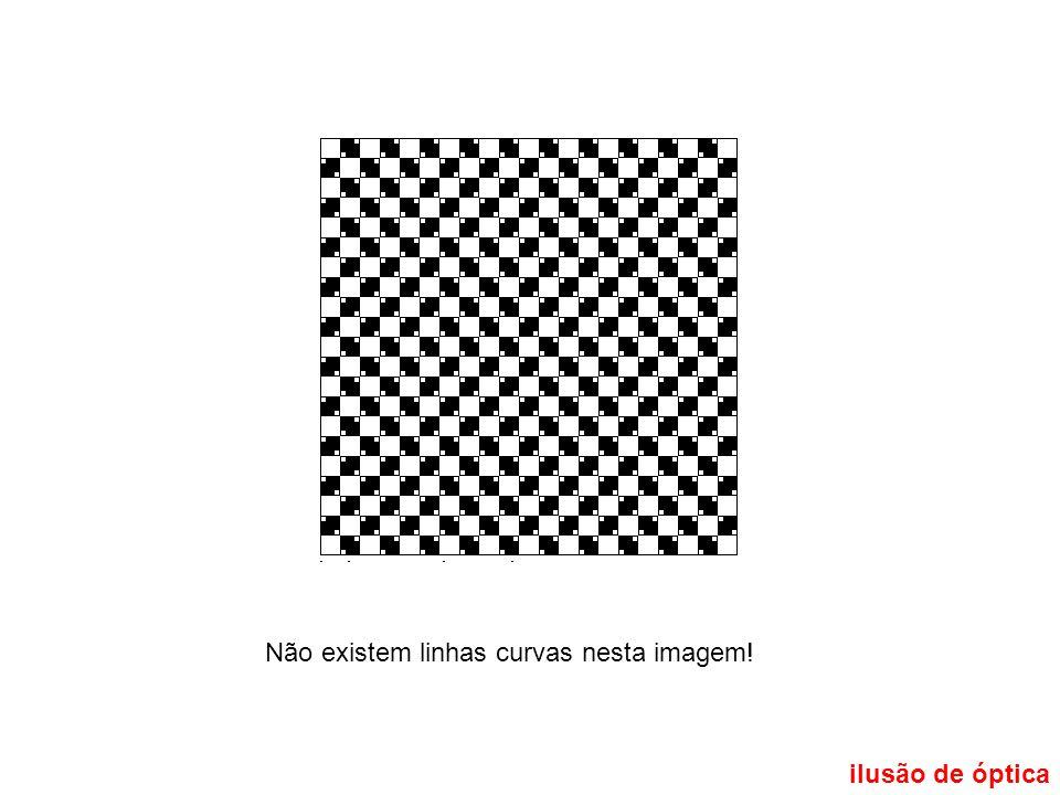 ilusão de óptica Não existem linhas curvas nesta imagem!
