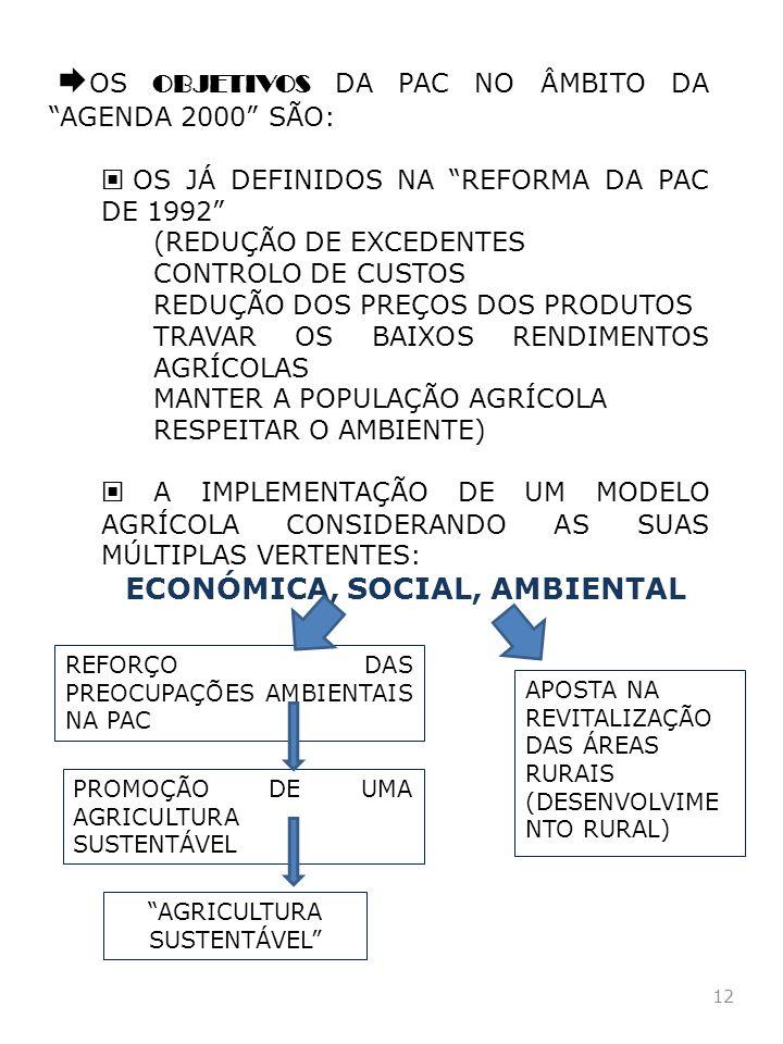 12 OS OBJETIVOS DA PAC NO ÂMBITO DA AGENDA 2000 SÃO: OS JÁ DEFINIDOS NA REFORMA DA PAC DE 1992 (REDUÇÃO DE EXCEDENTES CONTROLO DE CUSTOS REDUÇÃO DOS P