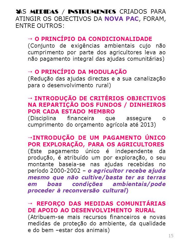15 AS MEDIDAS / INSTRUMENTOS CRIADOS PARA ATINGIR OS OBJECTIVOS DA NOVA PAC, FORAM, ENTRE OUTROS: O PRINCÍPIO DA CONDICIONALIDADE (Conjunto de exigênc