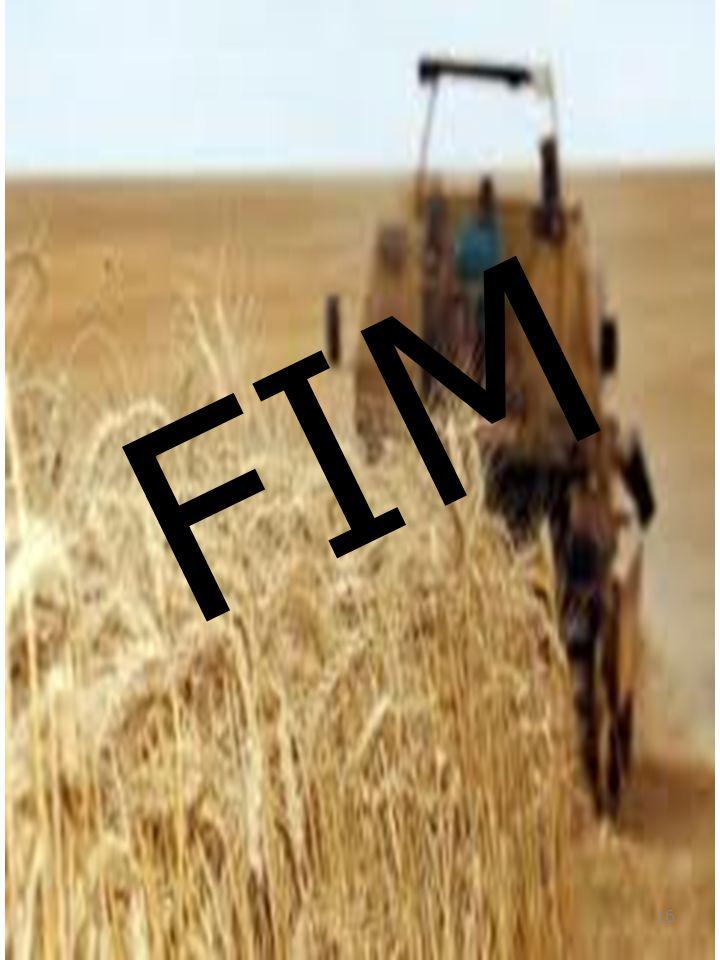 FIM 16