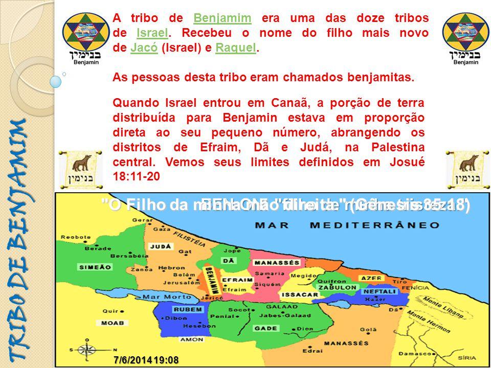 TRIBO DE BENJAMIM A tribo de Benjamim era uma das doze tribos de Israel. Recebeu o nome do filho mais novo de Jacó (Israel) e Raquel.BenjamimIsraelJac