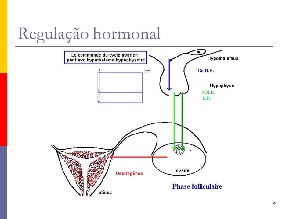 9 Regulação hormonal