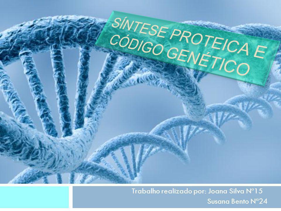 O que é a síntese proteica.Produção de proteínas através da informação proveniente do ADN.