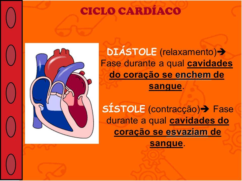 enchem DIÁSTOLE (relaxamento) Fase durante a qual cavidades do coração se enchem de sangue. CICLO CARDÍACO esvaziam SÍSTOLE (contracção) Fase durante