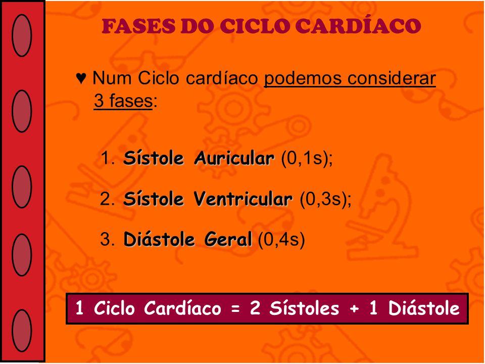 FASES DO CICLO CARDÍACO Num Ciclo cardíaco podemos considerar 3 fases: Sístole Auricular 1. Sístole Auricular (0,1s); Sístole Ventricular 2. Sístole V
