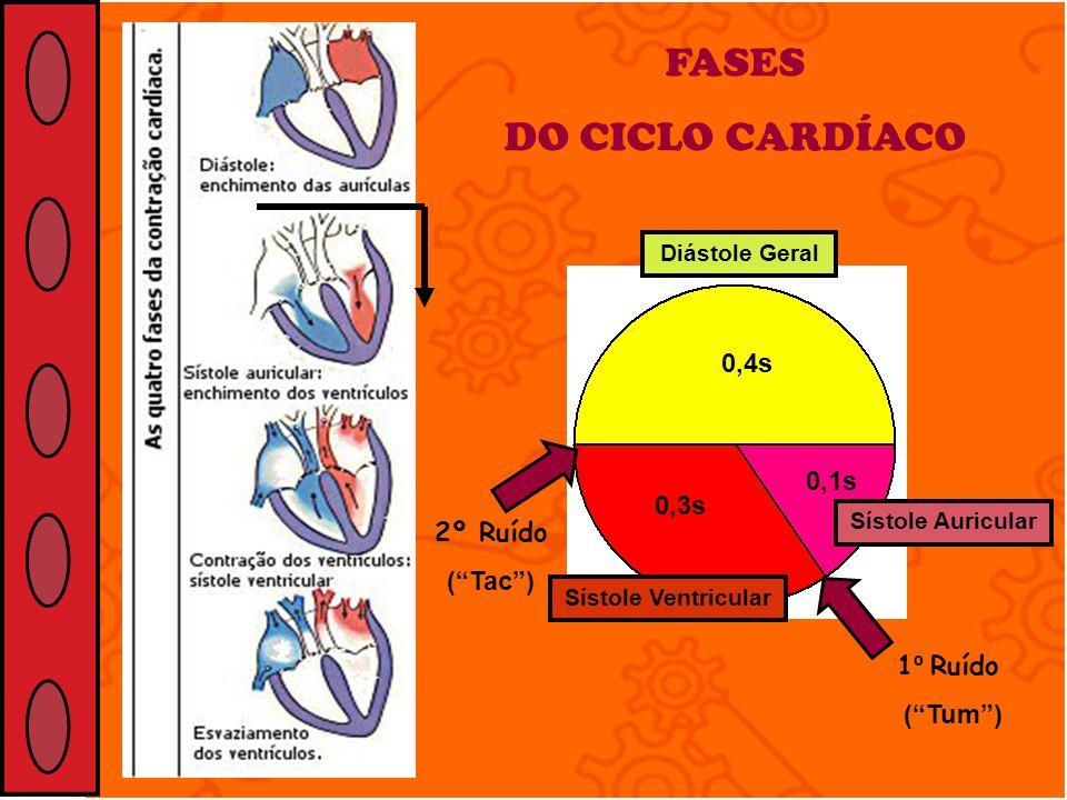 FASES DO CICLO CARDÍACO 0,4s 0,1s 0,3s 1 º Ruído (Tum) 2º Ruído (Tac) Diástole Geral Sístole Auricular Sístole Ventricular