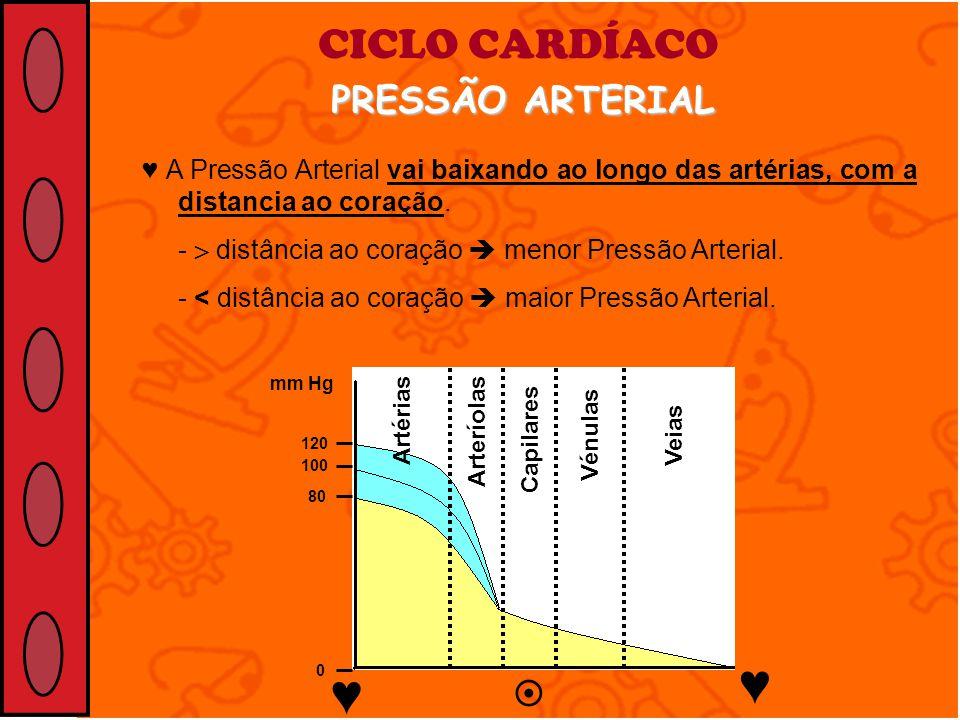 CICLO CARDÍACO PRESSÃO ARTERIAL A Pressão Arterial vai baixando ao longo das artérias, com a distancia ao coração. - distância ao coração menor Pressã
