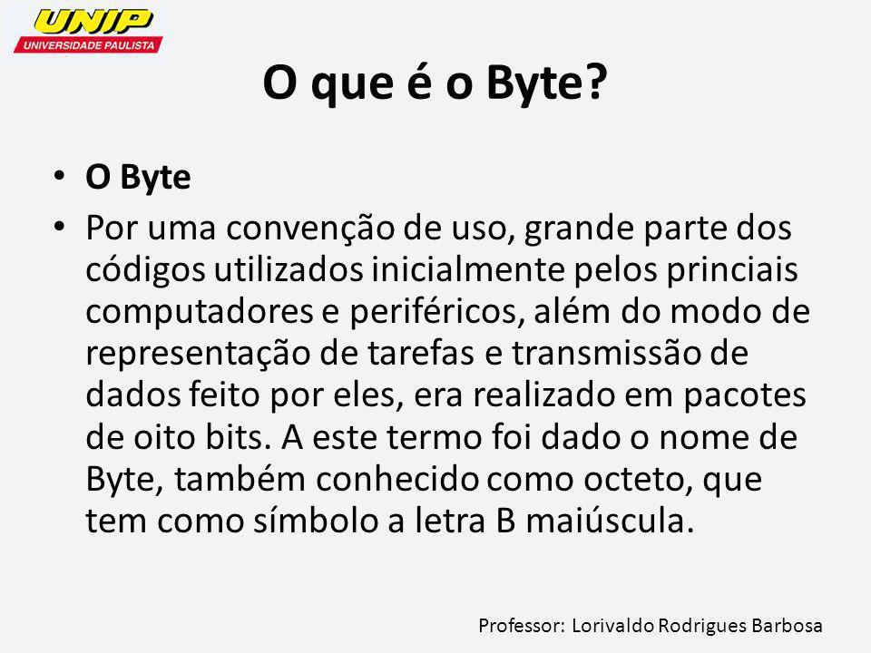 Professor: Lorivaldo Rodrigues Barbosa O que é o Byte.