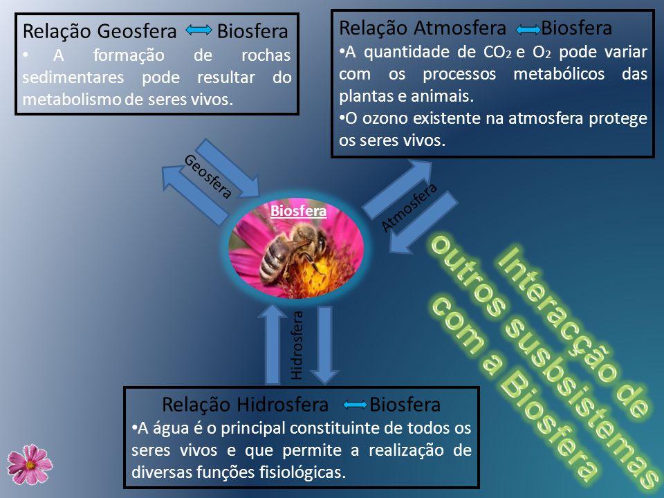 Relação Geosfera Biosfera A formação de rochas sedimentares pode resultar do metabolismo de seres vivos. Relação Atmosfera Biosfera A quantidade de CO
