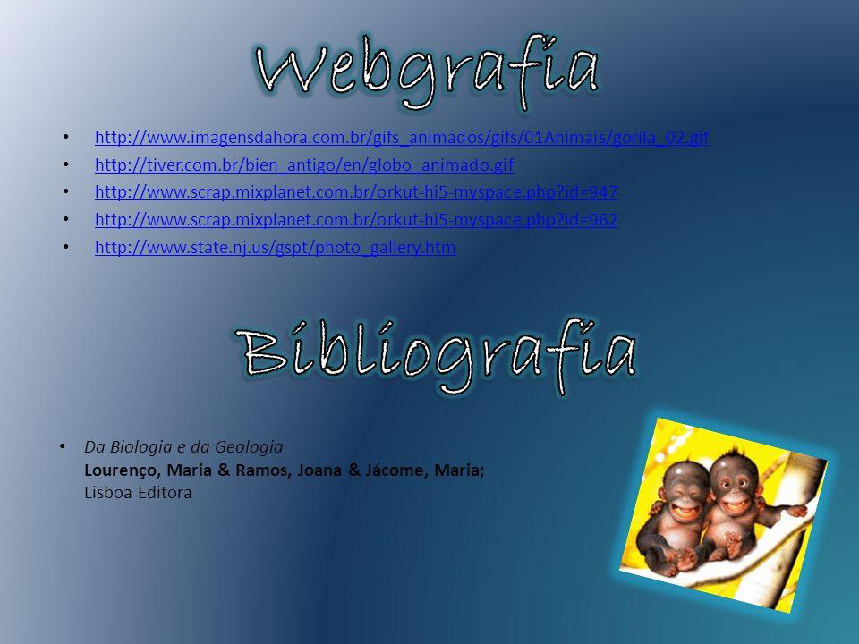 http://www.imagensdahora.com.br/gifs_animados/gifs/01Animais/gorila_02.gif http://tiver.com.br/bien_antigo/en/globo_animado.gif http://www.scrap.mixpl