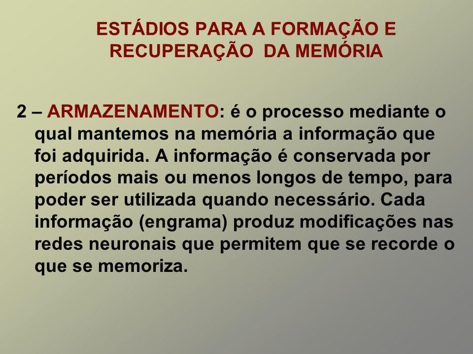 ESTÁDIOS PARA A FORMAÇÃO E RECUPERAÇÃO DA MEMÓRIA 2 – ARMAZENAMENTO: é o processo mediante o qual mantemos na memória a informação que foi adquirida.