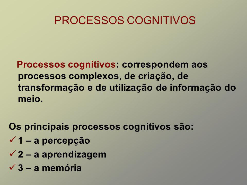 PROCESSOS COGNITIVOS Processos cognitivos: correspondem aos processos complexos, de criação, de transformação e de utilização de informação do meio. O