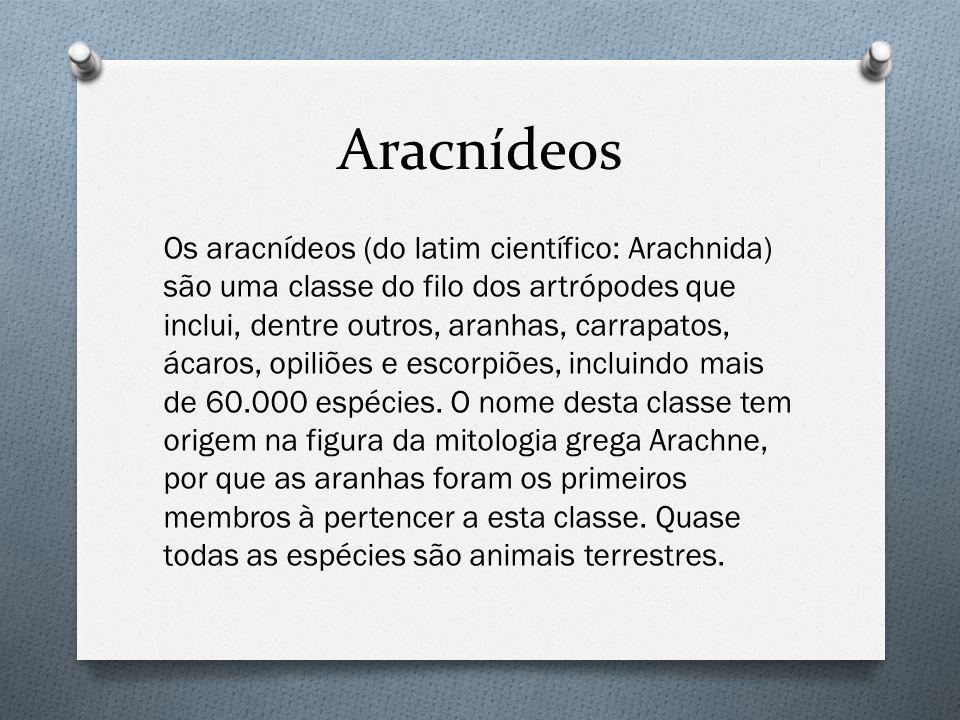 Aracnídeos Os aracnídeos (do latim científico: Arachnida) são uma classe do filo dos artrópodes que inclui, dentre outros, aranhas, carrapatos, ácaros, opiliões e escorpiões, incluindo mais de 60.000 espécies.