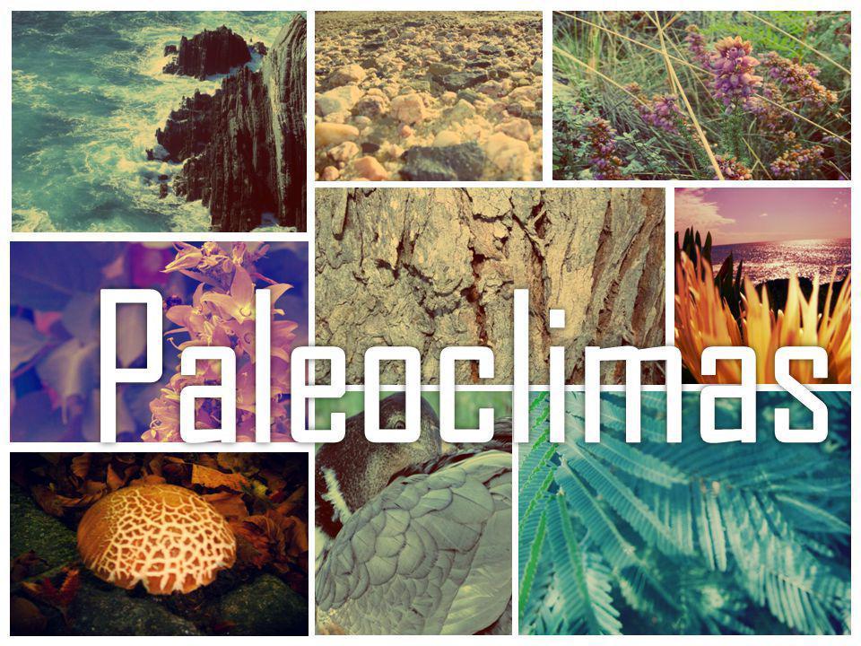 Condições ambientais num dado momento do tempo geológico A terra tem sofrido variações climáticas significativas desde a sua génese até à atualidade.