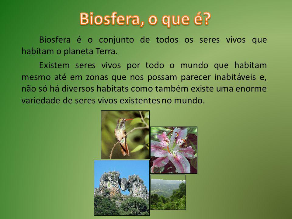 Biosfera é o conjunto de todos os seres vivos que habitam o planeta Terra. Existem seres vivos por todo o mundo que habitam mesmo até em zonas que nos