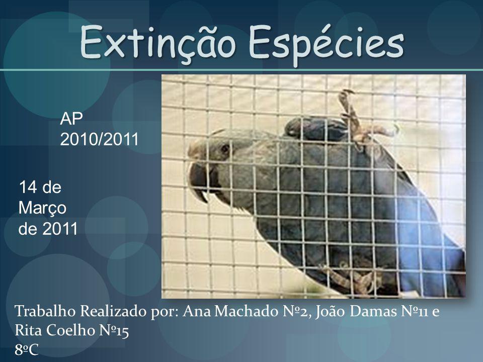 Extinção Espécies AP 2010/2011 14 de Março de 2011 Trabalho Realizado por: Ana Machado Nº2, João Damas Nº11 e Rita Coelho Nº15 8ºC