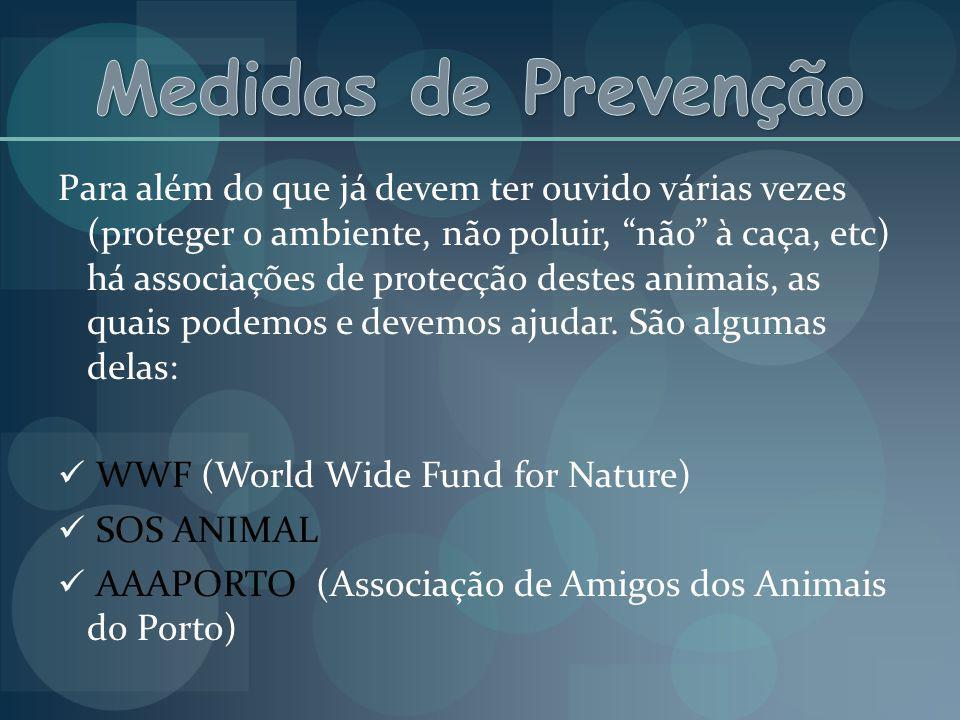 Para além do que já devem ter ouvido várias vezes (proteger o ambiente, não poluir, não à caça, etc) há associações de protecção destes animais, as qu