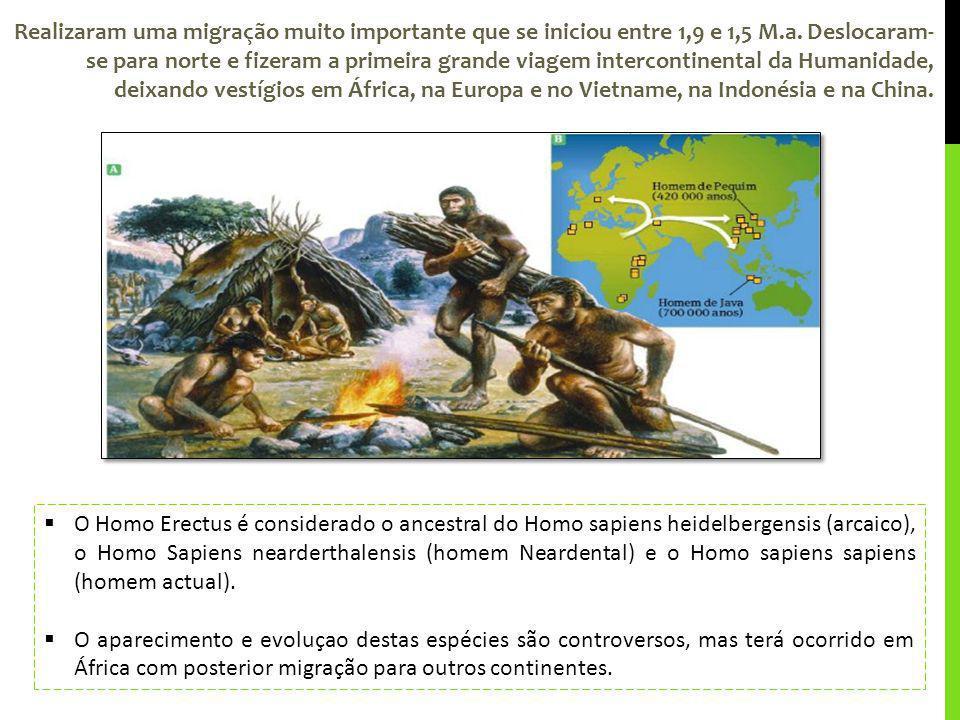 Realizaram uma migração muito importante que se iniciou entre 1,9 e 1,5 M.a. Deslocaram- se para norte e fizeram a primeira grande viagem intercontine
