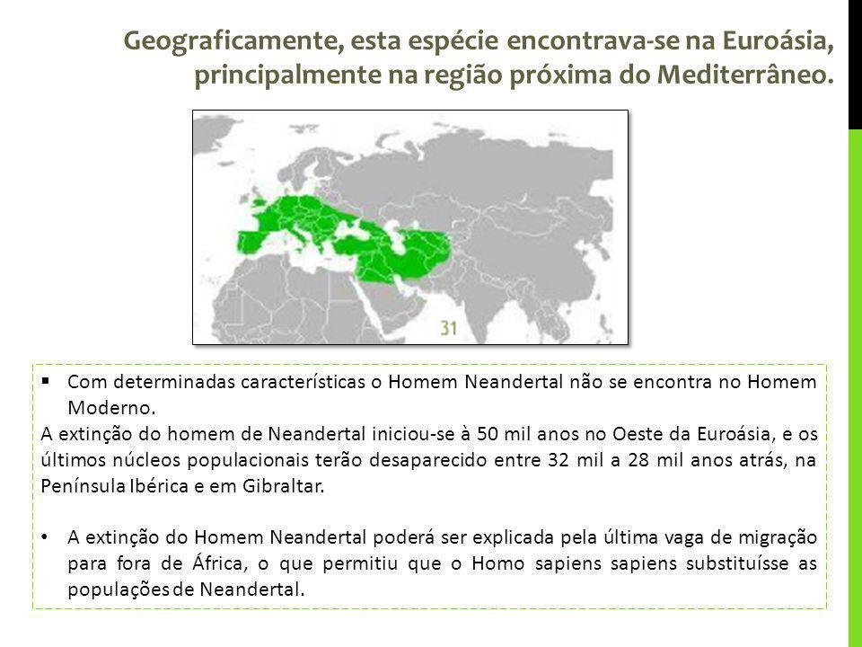 Geograficamente, esta espécie encontrava-se na Euroásia, principalmente na região próxima do Mediterrâneo. Com determinadas características o Homem Ne