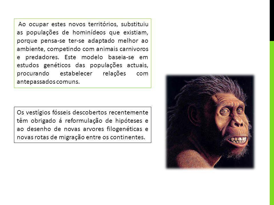 Ao ocupar estes novos territórios, substituiu as populações de hominídeos que existiam, porque pensa-se ter-se adaptado melhor ao ambiente, competindo