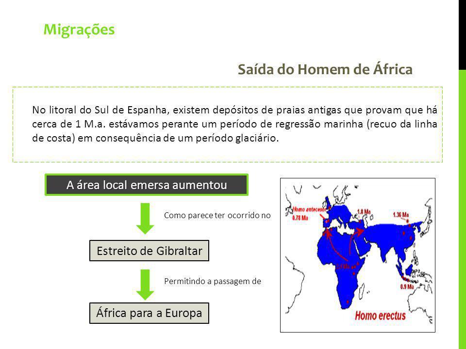 Migrações Saída do Homem de África No litoral do Sul de Espanha, existem depósitos de praias antigas que provam que há cerca de 1 M.a. estávamos peran