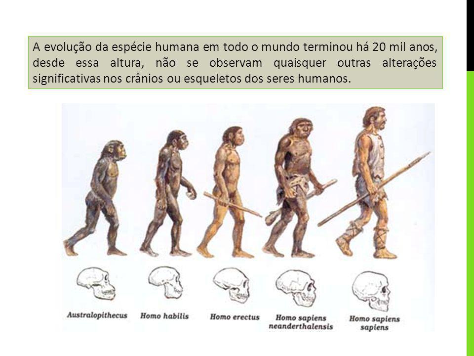 A evolução da espécie humana em todo o mundo terminou há 20 mil anos, desde essa altura, não se observam quaisquer outras alterações significativas no