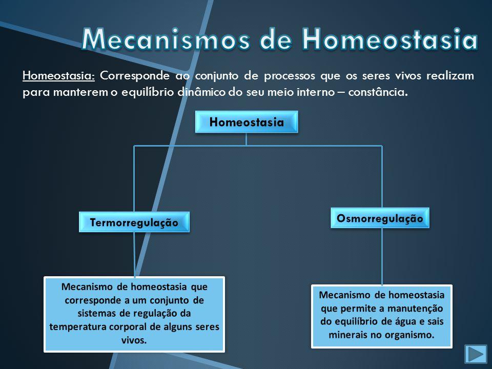 Homeostasia: Corresponde ao conjunto de processos que os seres vivos realizam para manterem o equilíbrio dinâmico do seu meio interno – constância.