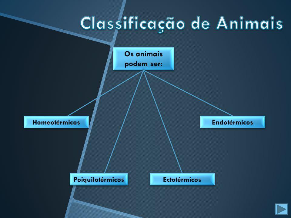 No Homem, assim como nos restantes mamíferos, o sistema urinário é constituído por um par de rins, por um par de ureteres, pela bexiga e pela uretra, sendo o processo de excreção, realizado pelos rins, envolve três fenómenos: No Homem, assim como nos restantes mamíferos, o sistema urinário é constituído por um par de rins, por um par de ureteres, pela bexiga e pela uretra, sendo o processo de excreção, realizado pelos rins, envolve três fenómenos: - Filtração - Filtração -Reabsorção -Reabsorção - Secreção - Secreção A quantidade de água reabsorvida e a concentração final da urina depende da permeabilidade das paredes do tubo distal e do tudo colector, sendo essa permeabilidade controlada por hormona antidiurética [ADH], que é libertada pela hipófise.