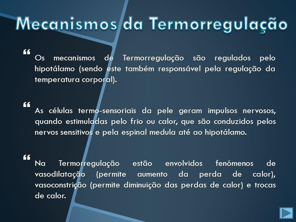 Os mecanismos de Termorregulação são regulados pelo hipotálamo (sendo este também responsável pela regulação da temperatura corporal). Os mecanismos d