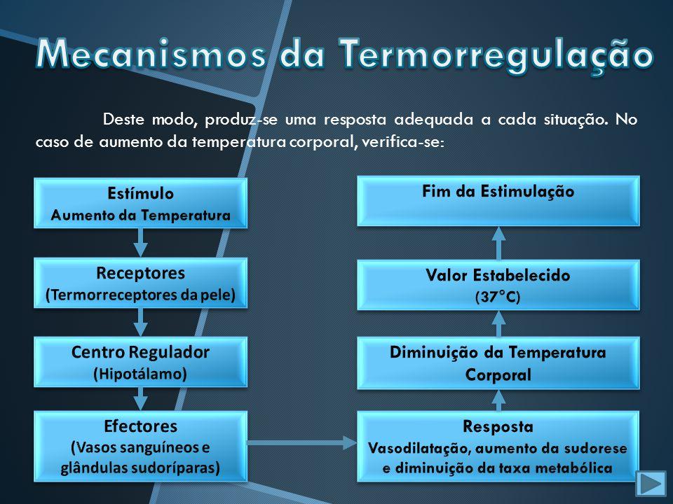 No caso de diminuição da temperatura corporal, verifica-se: O sistema nervoso regula a temperatura corporal através de mecanismos de feedback negativo (o efeito contraria a causa).