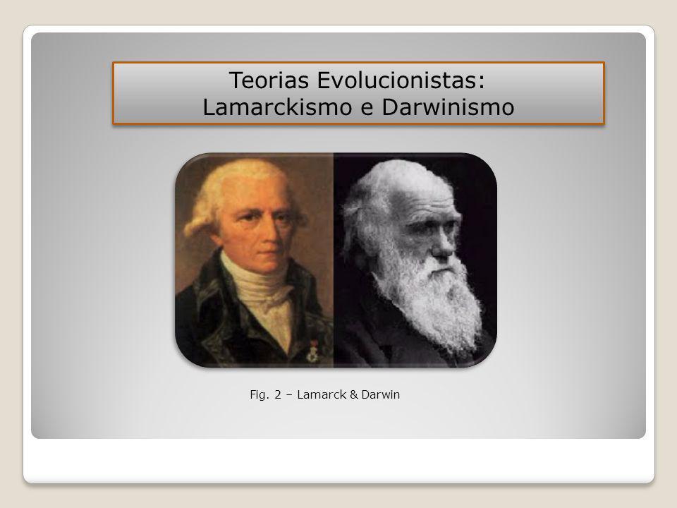 Fig. 2 – Lamarck & Darwin Teorias Evolucionistas: Lamarckismo e Darwinismo Teorias Evolucionistas: Lamarckismo e Darwinismo