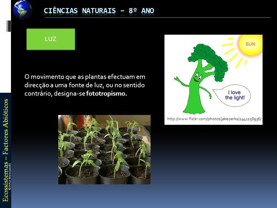 E c o s s i s t e m a s – F a c t o r e s A b i ó t i c o s © Artur Melo (2008) LUZ O movimento que as plantas efectuam em direcção a uma fonte de luz, ou no sentido contrário, designa-se fototropismo.