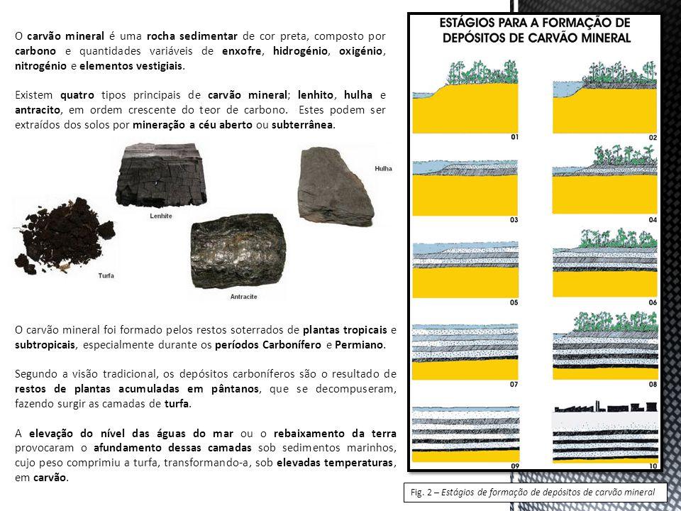 O carvão mineral é uma rocha sedimentar de cor preta, composto por carbono e quantidades variáveis de enxofre, hidrogénio, oxigénio, nitrogénio e elem