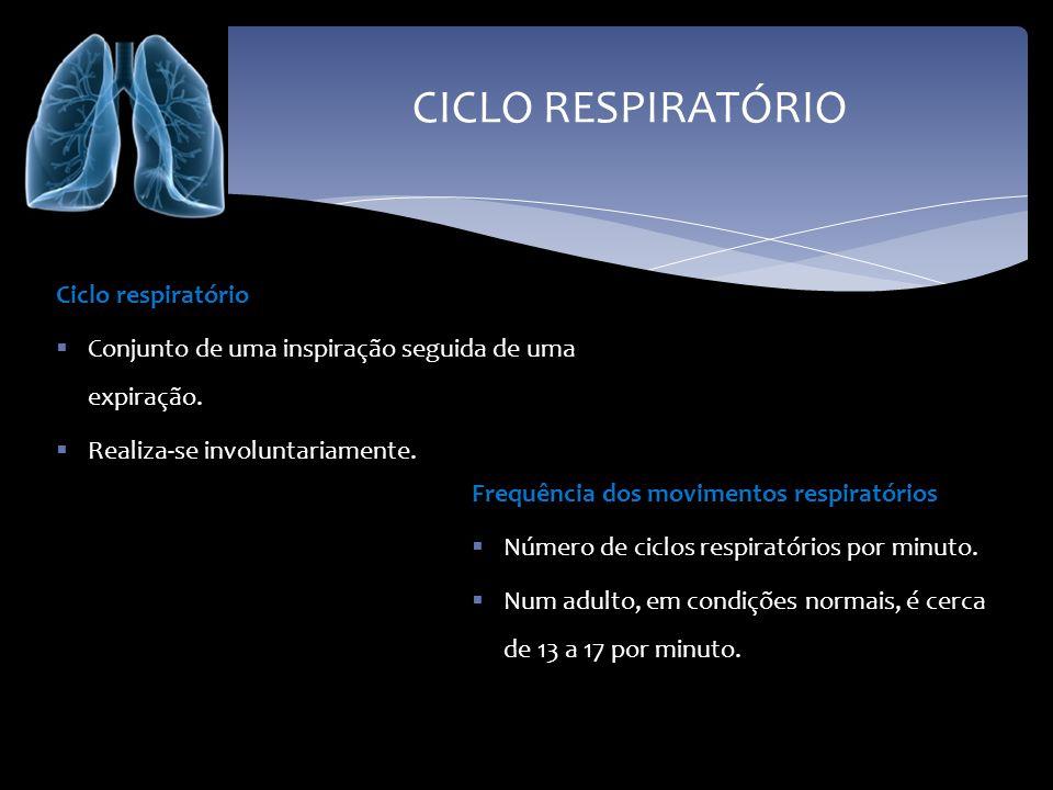 CICLO RESPIRATÓRIO Ciclo respiratório Conjunto de uma inspiração seguida de uma expiração. Realiza-se involuntariamente. Frequência dos movimentos res