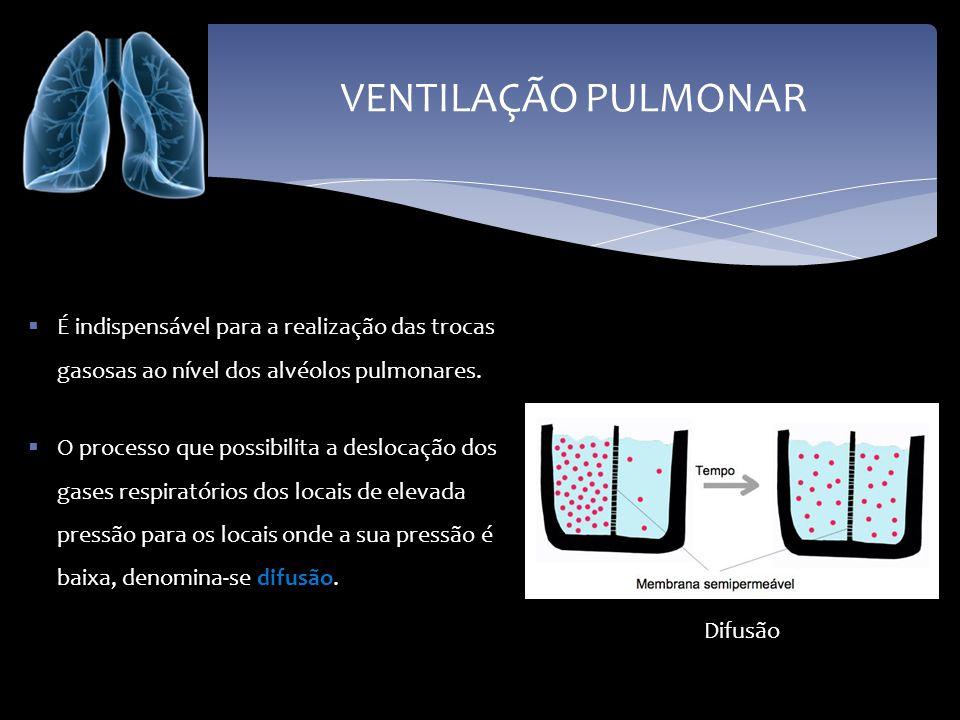 VENTILAÇÃO PULMONAR É indispensável para a realização das trocas gasosas ao nível dos alvéolos pulmonares. O processo que possibilita a deslocação dos