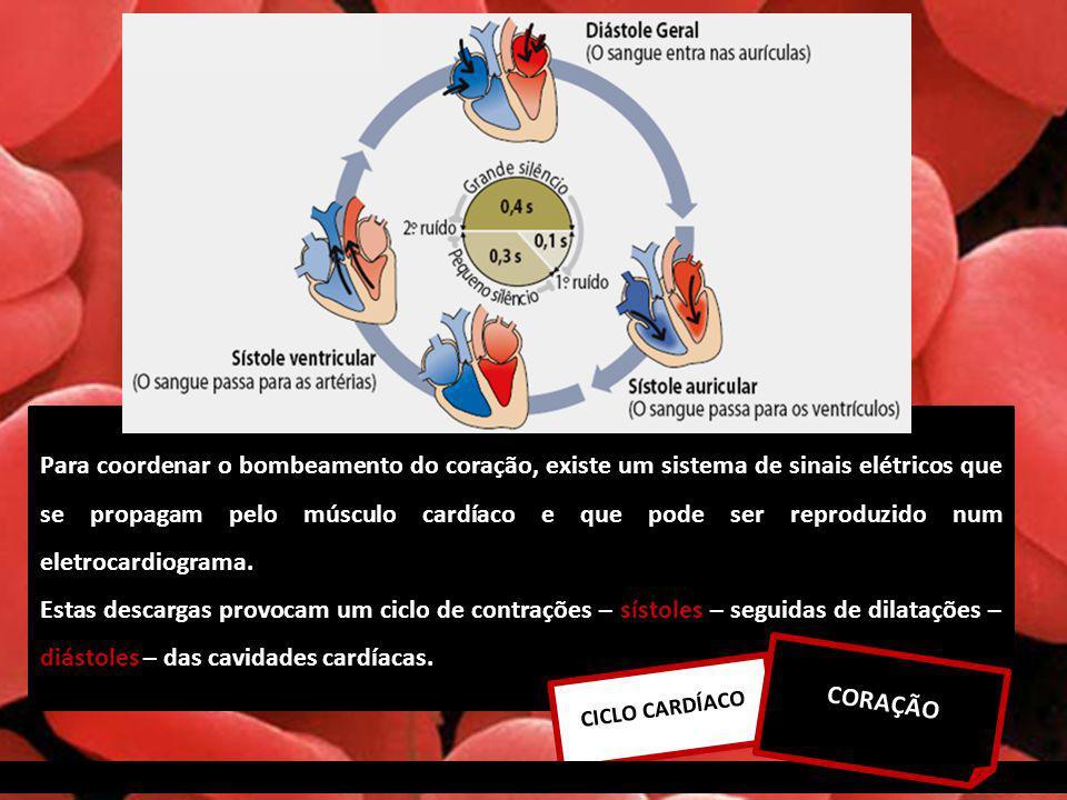 Para coordenar o bombeamento do coração, existe um sistema de sinais elétricos que se propagam pelo músculo cardíaco e que pode ser reproduzido num eletrocardiograma.