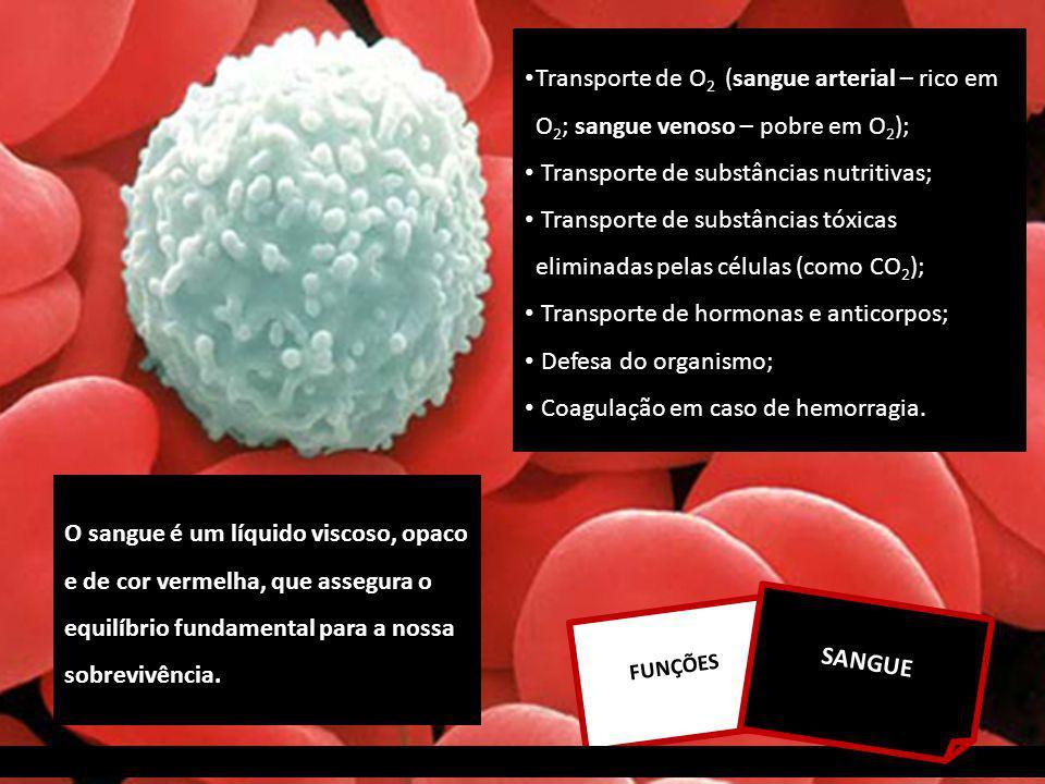Transporte de O 2 (sangue arterial – rico em O 2 ; sangue venoso – pobre em O 2 ); Transporte de substâncias nutritivas; Transporte de substâncias tóxicas eliminadas pelas células (como CO 2 ); Transporte de hormonas e anticorpos; Defesa do organismo; Coagulação em caso de hemorragia.