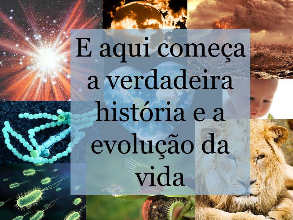 http://gifsanimados.com.sap o.pt/index2.html E aqui começa a verdadeira história e a evolução da vida