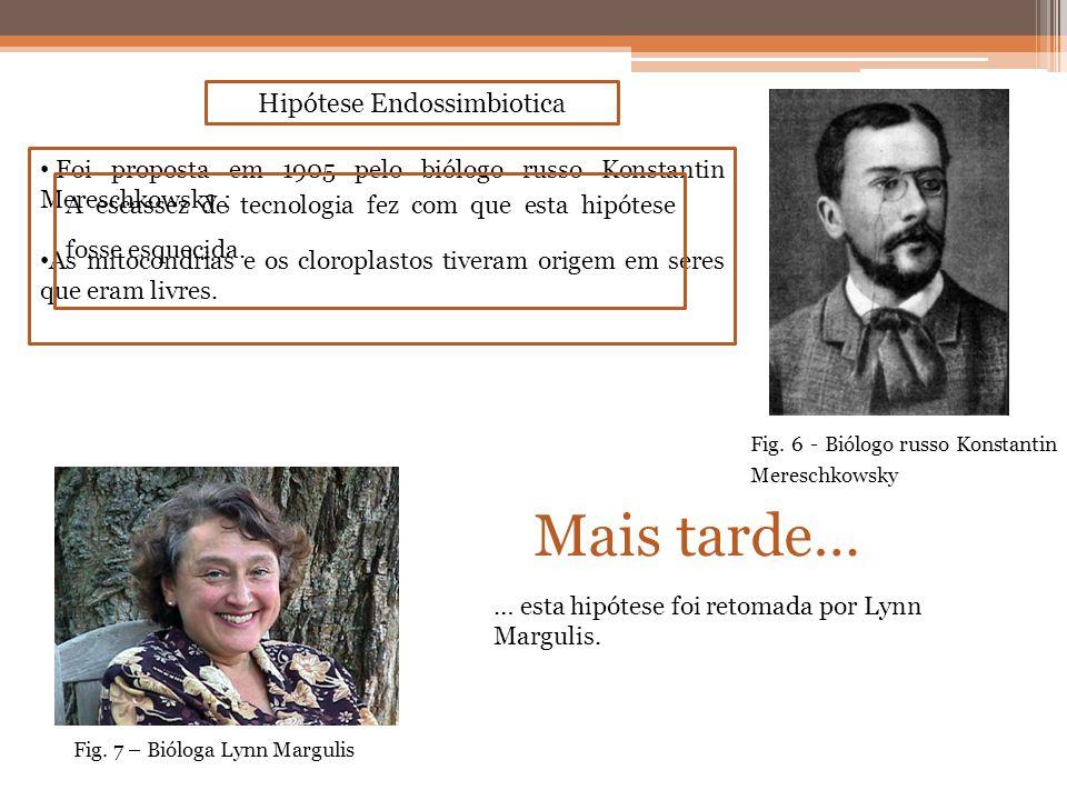 Hipótese Endossimbiotica Foi proposta em 1905 pelo biólogo russo Konstantin Mereschkowsky ; As mitocondrias e os cloroplastos tiveram origem em seres