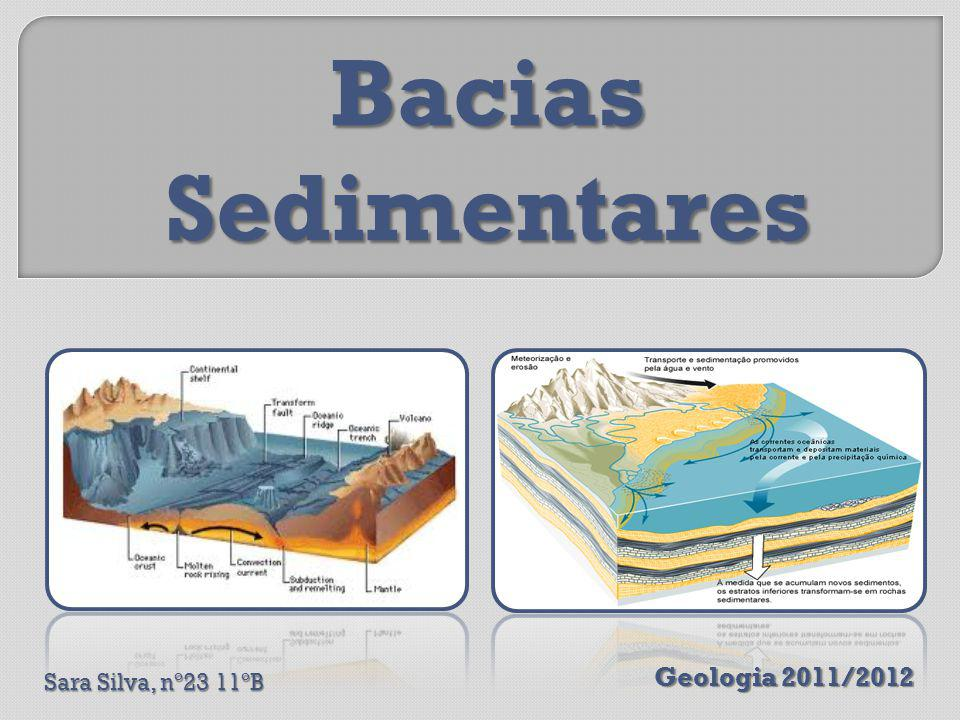 São depressões da superfície terrestre formadas por abatimentos da litosfera, nas quais se depositam sedimentos.