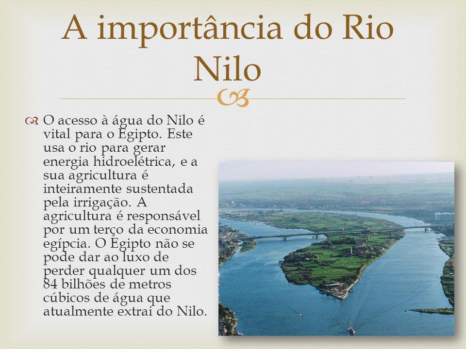 O acesso à água do Nilo é vital para o Egipto. Este usa o rio para gerar energia hidroelétrica, e a sua agricultura é inteiramente sustentada pela irr