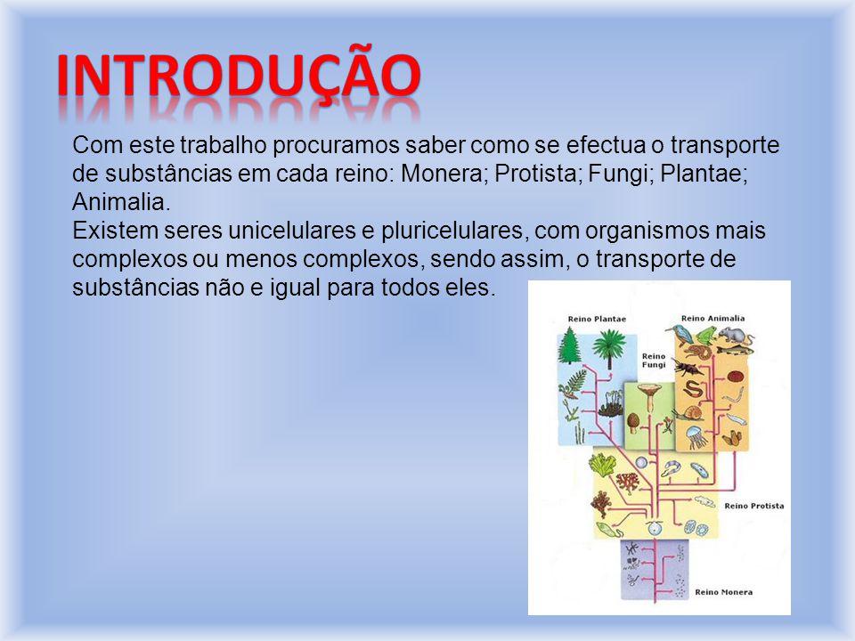 Com este trabalho procuramos saber como se efectua o transporte de substâncias em cada reino: Monera; Protista; Fungi; Plantae; Animalia.