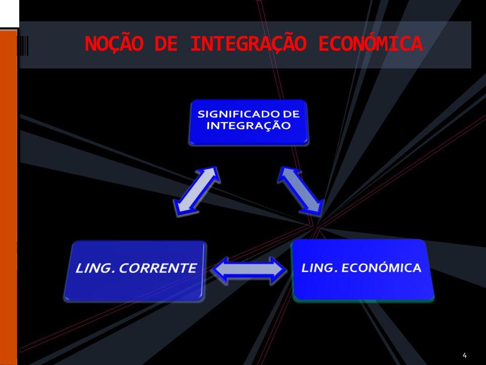 NOÇÃO DE INTEGRAÇÃO ECONÓMICA 4