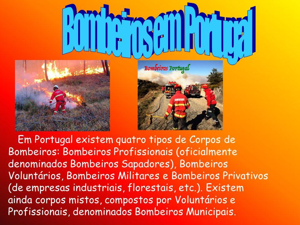 Em Portugal existem quatro tipos de Corpos de Bombeiros: Bombeiros Profissionais (oficialmente denominados Bombeiros Sapadores), Bombeiros Voluntários