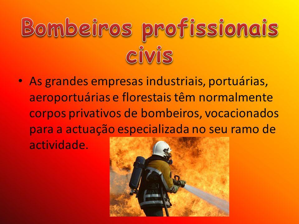 As grandes empresas industriais, portuárias, aeroportuárias e florestais têm normalmente corpos privativos de bombeiros, vocacionados para a actuação