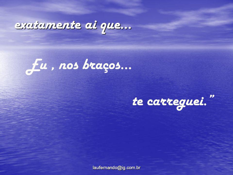 laufernando@ig.com.br