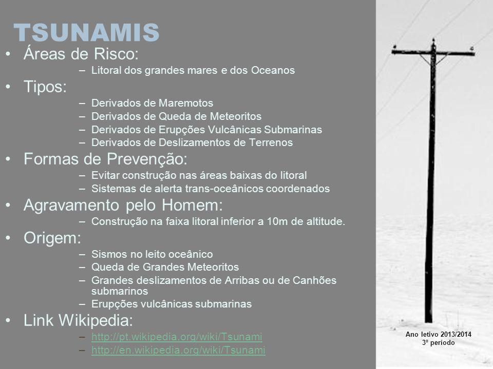 TSUNAMIS Áreas de Risco: –Litoral dos grandes mares e dos Oceanos Tipos: –Derivados de Maremotos –Derivados de Queda de Meteoritos –Derivados de Erupç