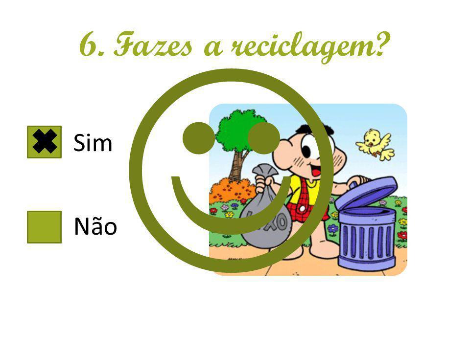 6. Fazes a reciclagem? Sim Não