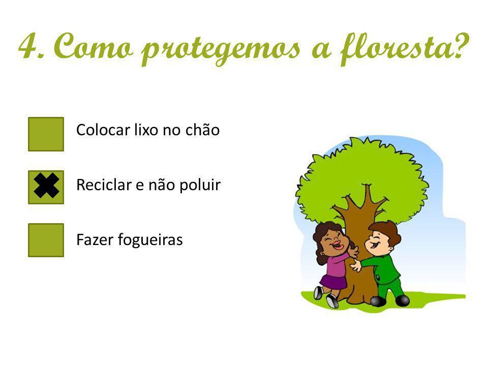 Colocar lixo no chão Reciclar e não poluir Fazer fogueiras 4. Como protegemos a floresta?